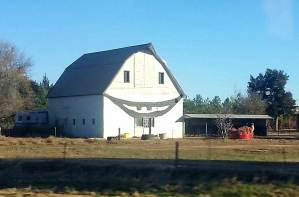 Just when we were starting to get bored with the scenery we came across the happiest barn ever!